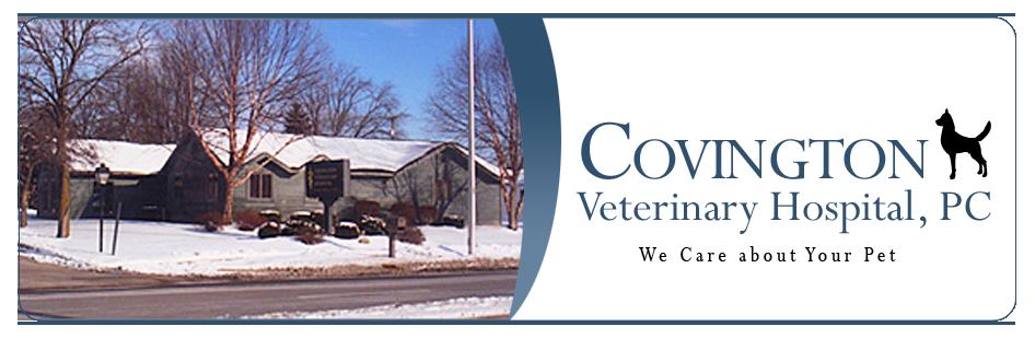 covington vet clinic